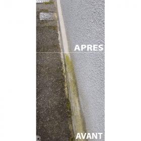 anti mousse murs, façades